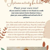 Autumn activity for kids!